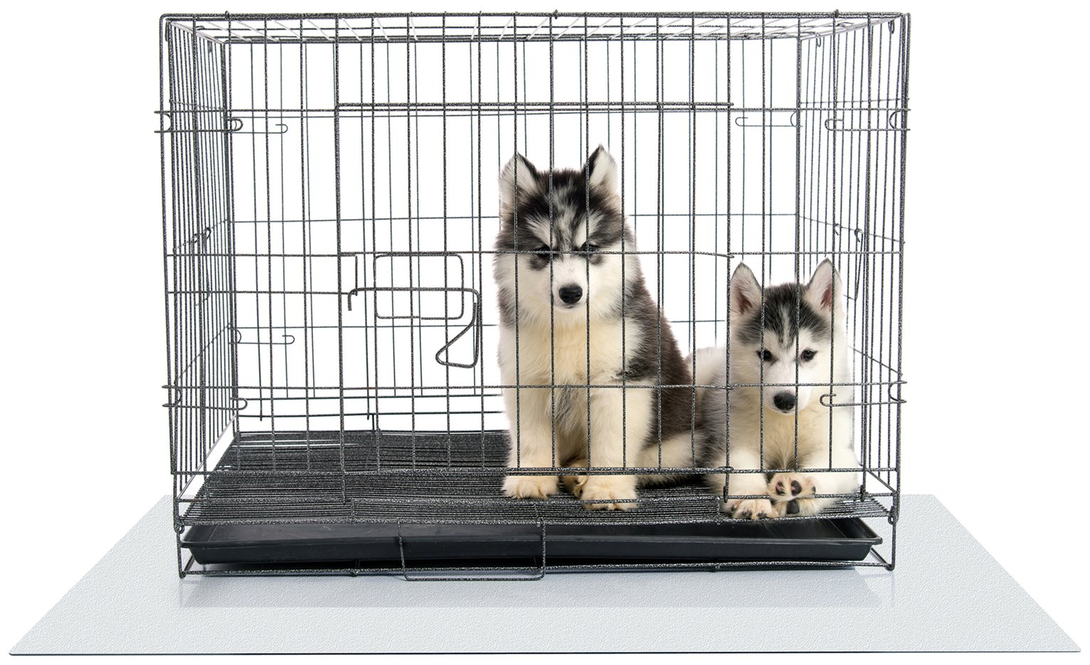 Dog Crate Floor Protection Mat – Large £29.99 @ Argos